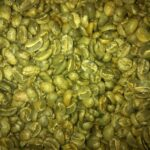 Green, unroasted, fair trade coffee beans
